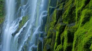 Proxy Falls Oregon Cascade Mountains